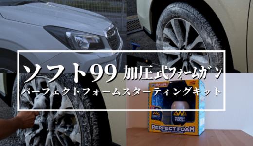 【ソフト99】パーフェクトフォームスターティングセット購入レビュー